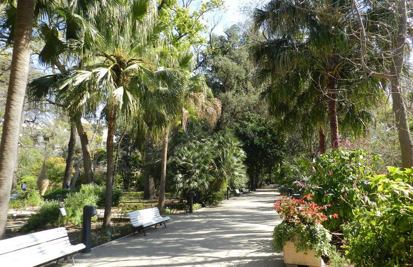 Jardin botánico Valencia