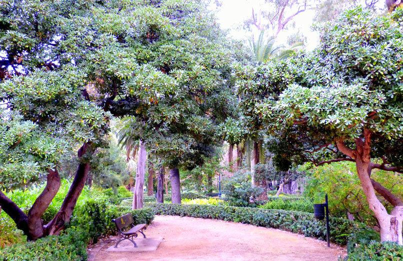 Jardín de Ayora