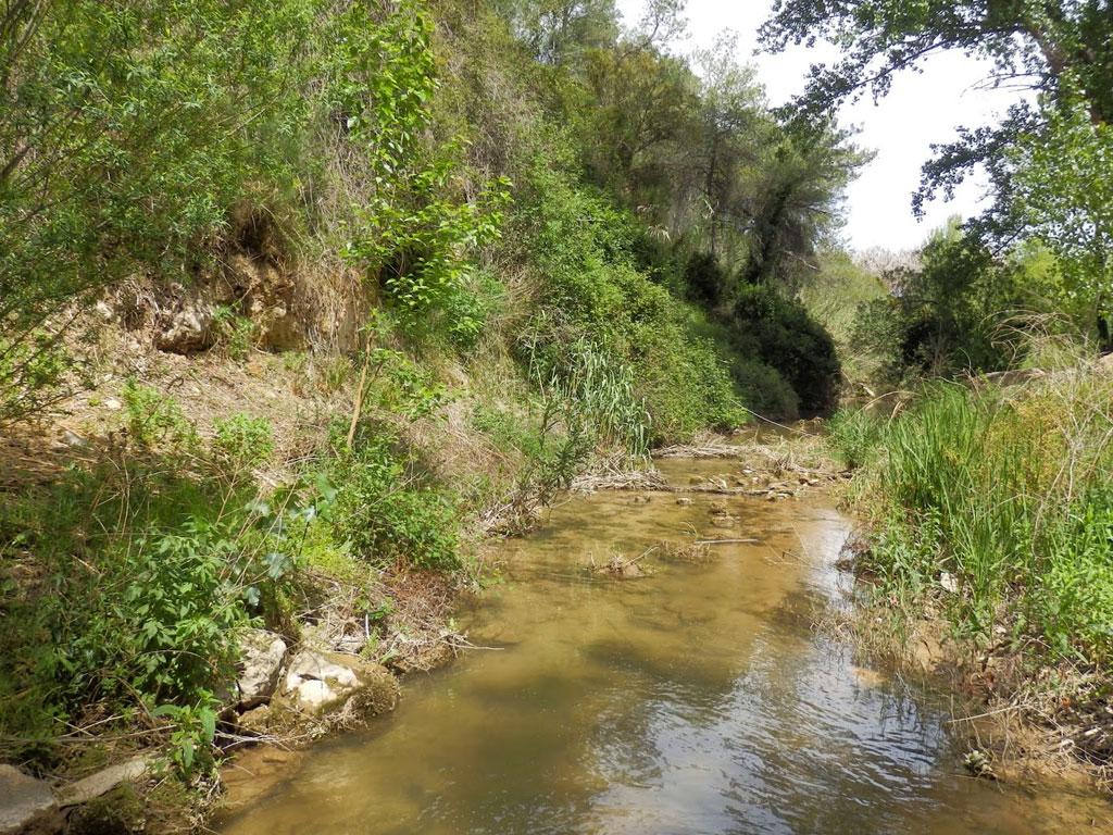Ruta del Barranco del Barcal Navarres | Experiences Valencia
