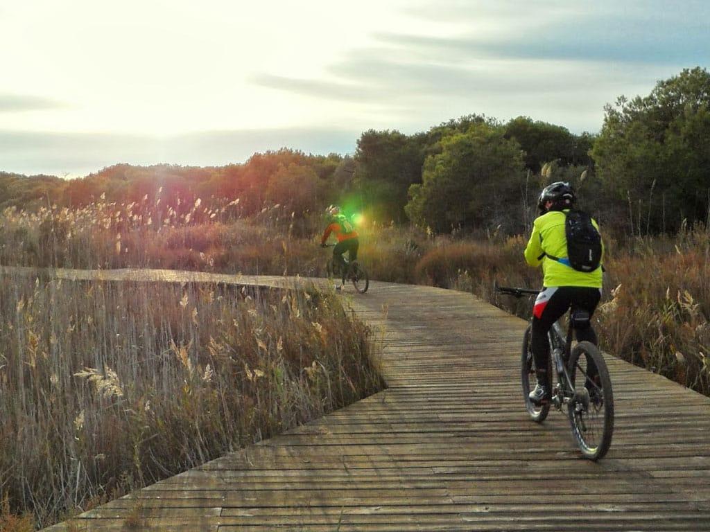 La Albufera en bici | Experiences Valencia