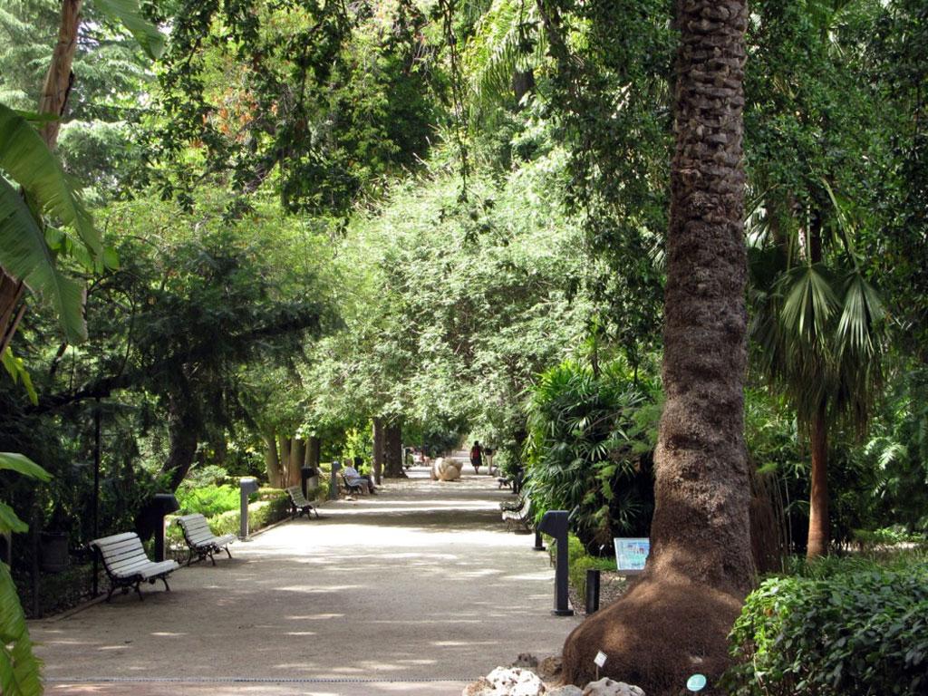 Parques y jardines de Valencia | Experiences valencia